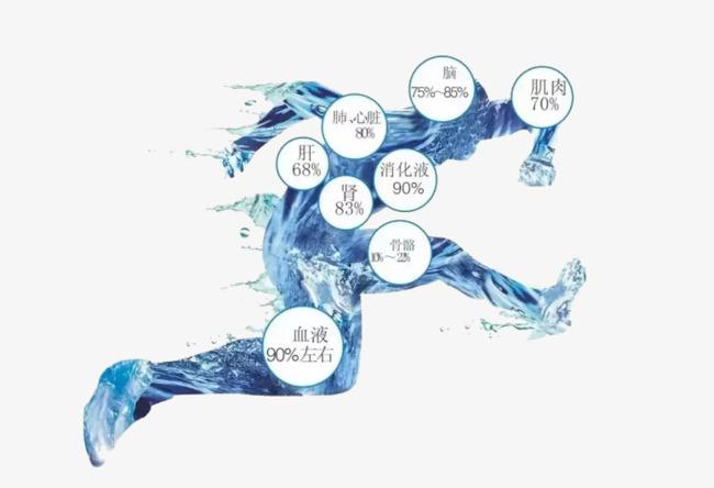 """""""Nếu nói rằng nước chiếm 70% cơ thể con người,"""